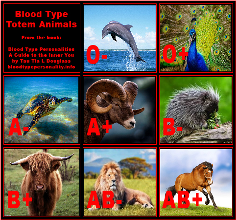 Blood Type Graphics - Blood Type Personality